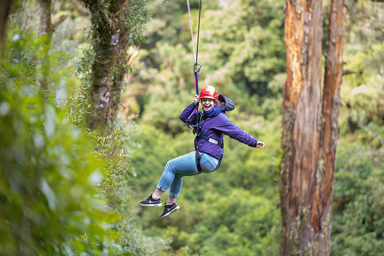 lakeview-golf-canopy-tours About Rotorua