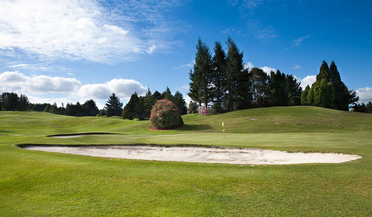 lakeview-golf-rotorua-12th-green Holes