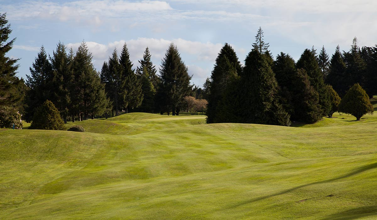 lakeview-golf-rotorua-15th-fairway Holes