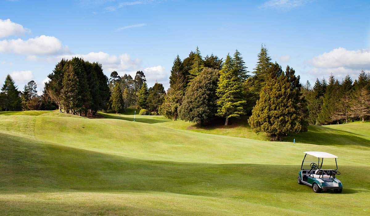 lakeview-golf-rotorua-16th-fairway-better-cart Holes